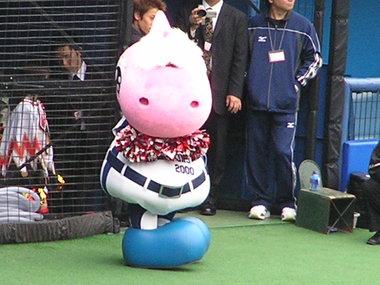 Mascot_213
